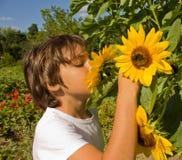 Menino no jardim colorido do verão fotos de stock royalty free
