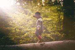 Menino no jogo do chapéu exterior na floresta do verão Imagens de Stock