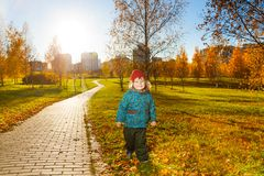 Menino no parque ensolarado do outono Fotos de Stock Royalty Free
