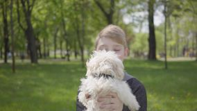 Menino novo adorável do retrato que guarda um cão macio branco no parque verde bonito filme