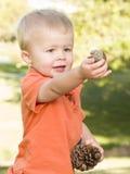 Menino novo bonito com os cones do pinho no parque Fotos de Stock