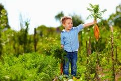 Menino novo com a cenoura que aprecia a vida no campo Fotos de Stock Royalty Free