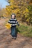 Menino novo com folhas amarelas fotografia de stock