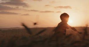 Menino novo com um suporte do cabo do super-herói em um campo de trigo dourado durante o por do sol filme