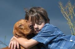Menino novo e um cão de Vizsla Fotografia de Stock