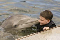Menino novo inocente com um golfinho Imagens de Stock Royalty Free