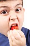 Menino novo que come morangos Imagens de Stock