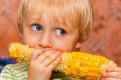Menino novo que come o milho Fotos de Stock