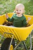 Menino novo que senta-se no wheelbarrow Imagem de Stock
