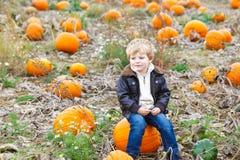 Menino pequeno da criança da criança com a abóbora grande no jardim Fotografia de Stock