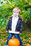 Menino pequeno da criança da criança com a abóbora grande no jardim Imagem de Stock Royalty Free