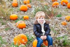 Menino pequeno da criança da criança com a abóbora grande no jardim Fotos de Stock