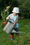Menino pequeno do jardineiro Imagem de Stock Royalty Free
