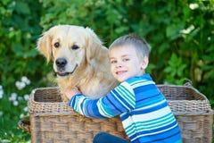 Menino pequeno e cão bonito na cesta imagem de stock royalty free