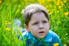 Menino pequeno no prado Imagens de Stock