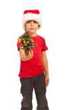 Menino pequeno que dá a árvore de Natal Fotos de Stock