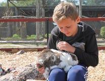 Menino que afaga o coelho do animal de estimação no jardim zoológico Imagem de Stock