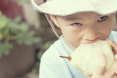 Menino que come a pera Foto de Stock