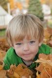 Menino que descansa nas folhas Imagem de Stock