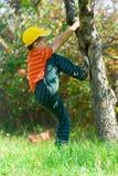 Menino que escala em uma árvore Fotos de Stock