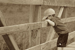 Menino em uma ponte Fotos de Stock