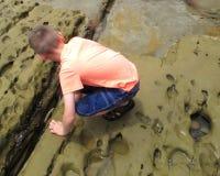Menino que explora em uma costa do Oceano Pacífico Fotos de Stock Royalty Free
