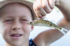 Menino que guarda um peixe frito Fotos de Stock
