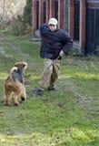 Menino que joga com cão Fotos de Stock