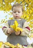 Menino que joga com folhas amarelas fotos de stock