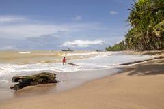 Menino que joga com ondas de oceano em uma palmeira foto de stock