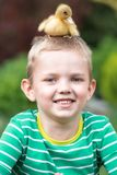 Menino que joga com um patinho pequeno Duck o assento na cabeça da criança imagens de stock royalty free