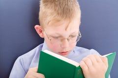 Menino que lê livro interessante Imagens de Stock