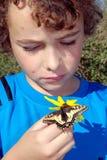 Menino que olha a borboleta amarela do swallowtail Imagens de Stock Royalty Free