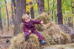 Menino que senta-se em um monte de feno no outono Fotos de Stock