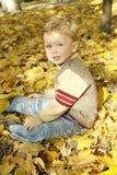 Menino que senta-se nas folhas amarelas imagens de stock