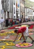 Menino que trabalha nos tapetes da flor do Corpus Christi, La Laguna, Tenerife, Ilhas Canárias, Espanha Fotos de Stock Royalty Free