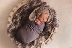 Menino recém-nascido de sono Imagem de Stock
