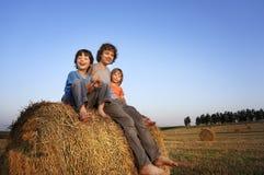3 meninos em um monte de feno no campo Fotos de Stock