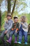 Meninos no banco da floresta imagem de stock