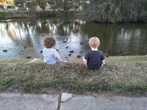 Meninos que alimentam patos fotografia de stock royalty free