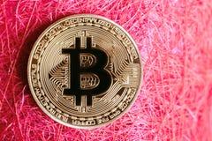 Menniczego złota bitcoin opuszczać na czerwonym tle obraz stock