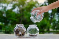 Menniczy drzewny Szklany słój rośliny dorośnięcie od monet na zewnątrz szklanego słoju pieniądze inwestycji i oszczędzania pienię obraz stock