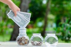 Menniczy drzewny Szklany słój rośliny dorośnięcie od monet na zewnątrz szklanego słoju pieniądze inwestycji i oszczędzania pienię zdjęcia royalty free