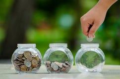 Menniczy drzewny Szklany słój rośliny dorośnięcie od monet na zewnątrz szklanego słoju pieniądze inwestycji i oszczędzania pienię fotografia royalty free