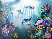 meno de lombok d'île de l'Indonésie de gili près de monde sous-marin de tortue de mer Photos stock