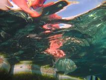 meno för lombok för giliindonesia ö nära den undervattens- världen för havssköldpadda arkivbilder