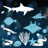 meno lombok острова Индонесии gili около мира черепахи моря подводного иллюстрация штока