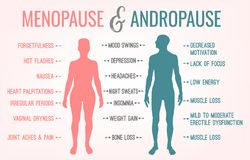 Menopause And Andropause. Men and women sexual health. Main symptoms and causes. Beautiful vector illustration. Medical infographic useful for an educational Royalty Free Stock Images