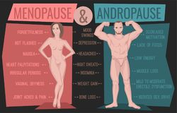Menopause and andropause. Men and women sexual health. Main symptoms and causes. Beautiful vector illustration. Medical infographic useful for an educational Stock Image
