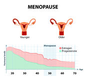 Menopause or climacteric Royalty Free Stock Photo